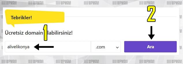 Kişisel İnternet Sitesi Nasıl Açılır - Alan Adı Seçimi